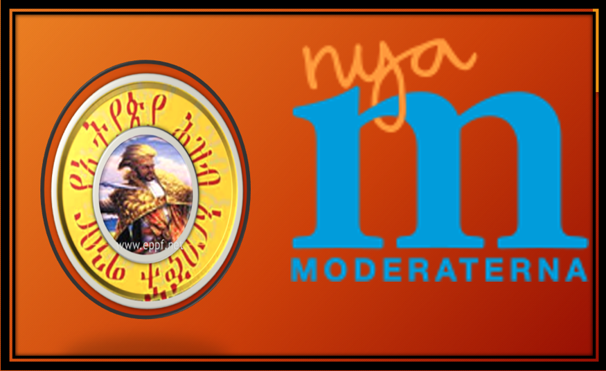 Swedeish Moderate Party Discussion onEthiopian Current Affairs with  አርበኛው ከስዊደን ሞደሬት ፓርቲ ዉይይት